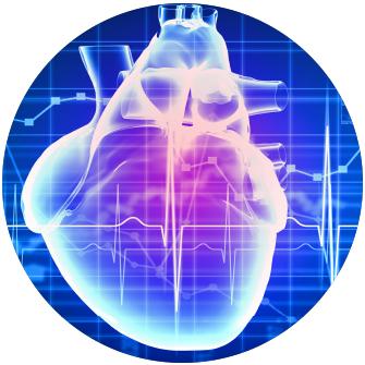 heart-grants