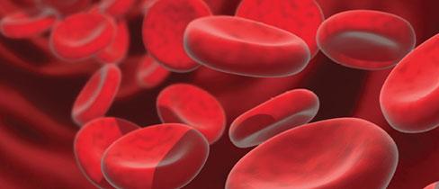 bigstock-Blood-Cells-9_fmt